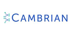 Cambrian 300x150