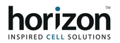 Horizon Logo-581398-edited.png