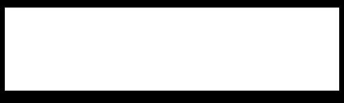 LSX USA White 500x