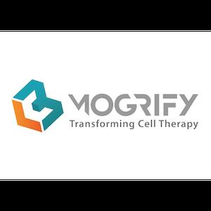 Mogrify-01