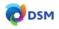 Royal DSM 300x