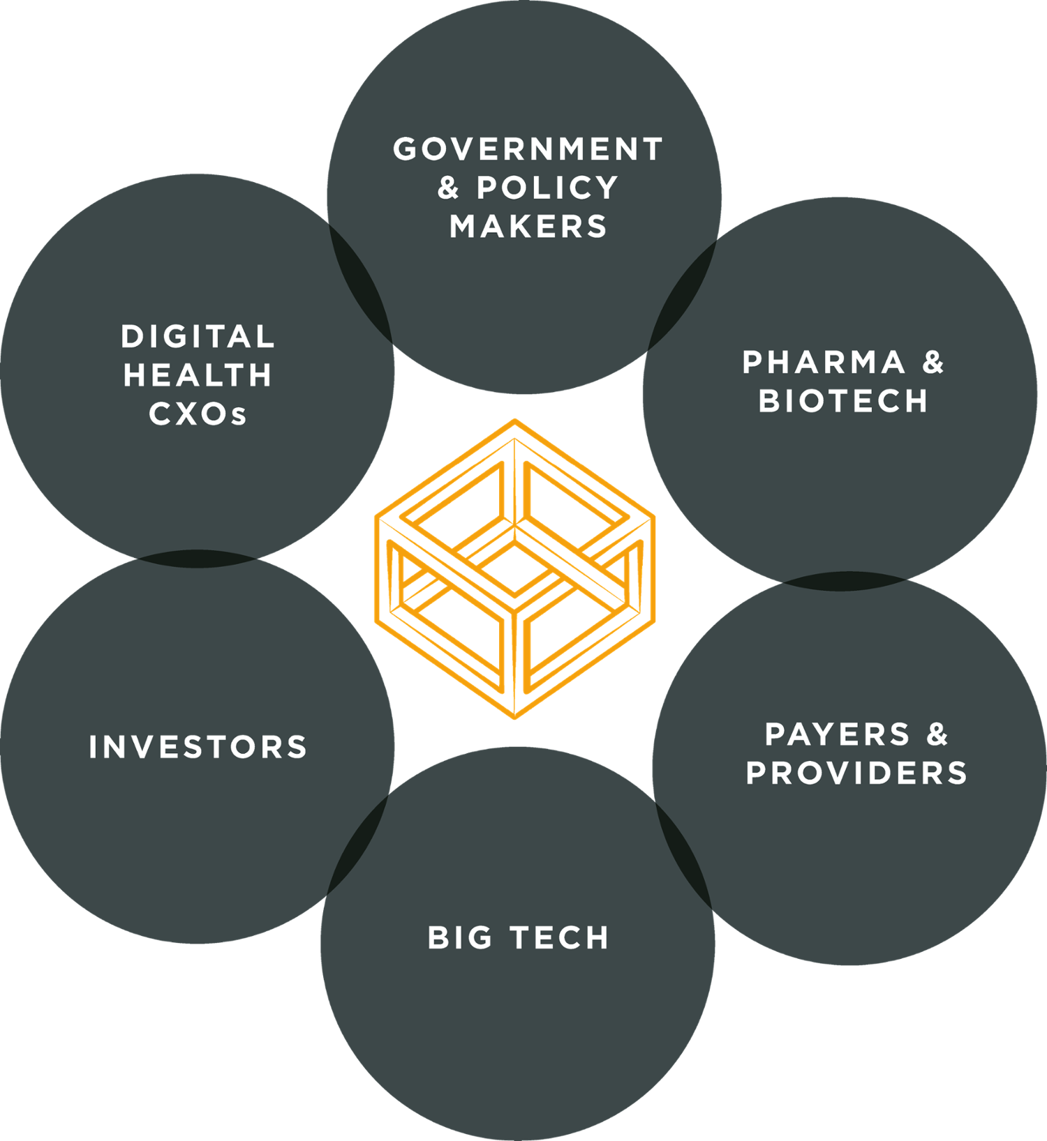 Who attends the DigiHealth Leaders?