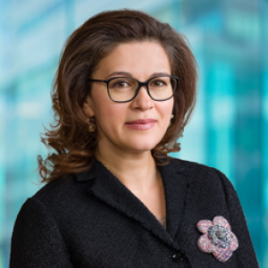Anna Frostegård, CSO and CMO, Annexin Pharmaceuticals